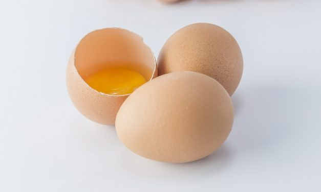 Salmonelosis y embarazo: ¡cuidado con la salmonella!